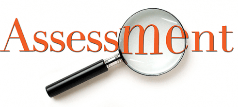 magnifying glass assessment icon