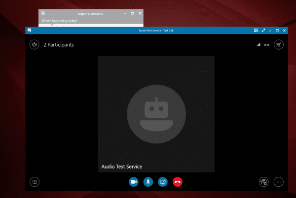 Skype for Business how to make a test call screenshot of test call