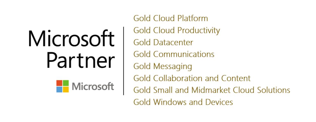 Microsoft Gold Top Partner Logo